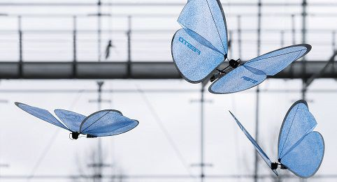 You will be impressed by this butterfly robot
